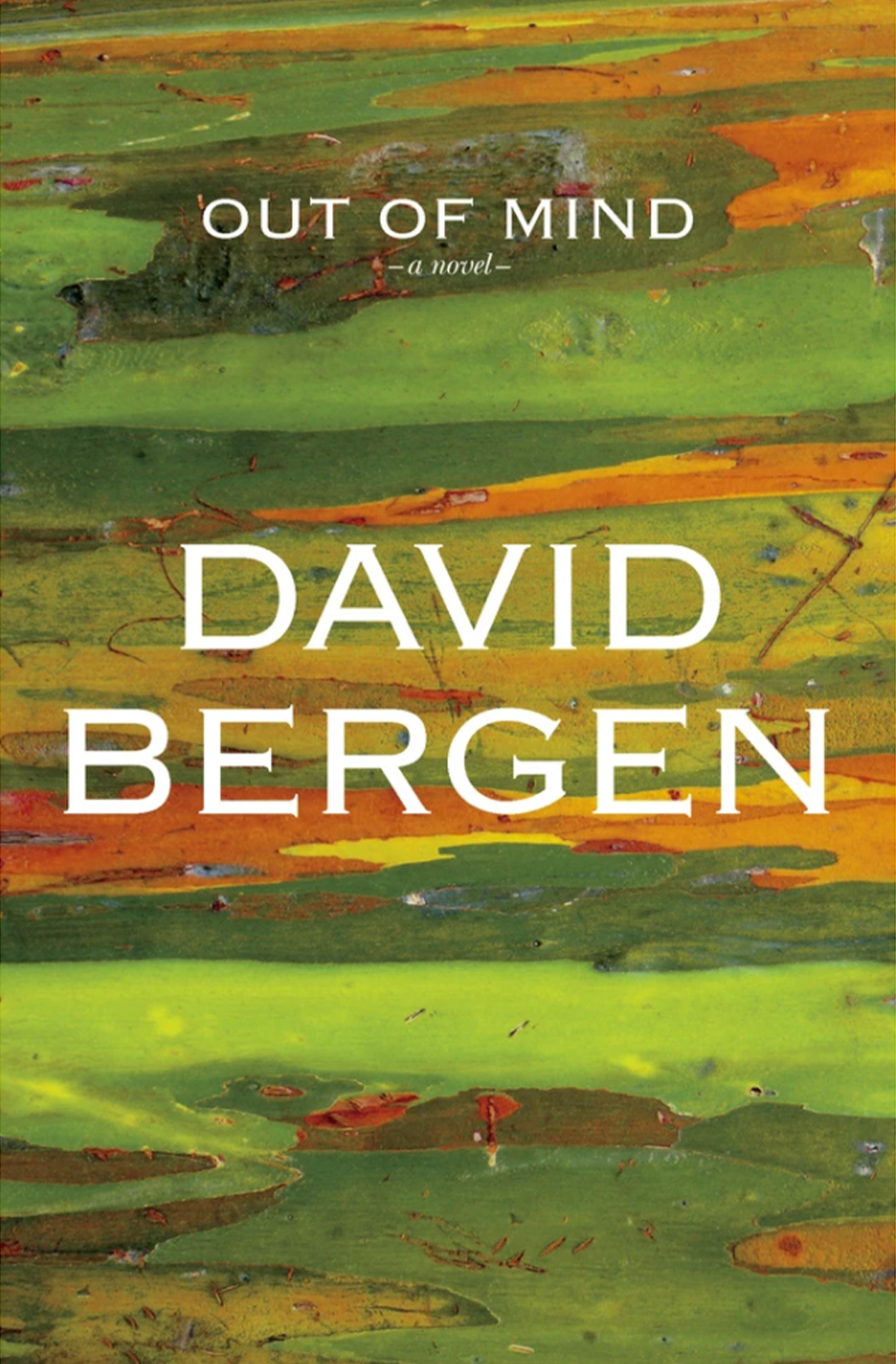 Out of Mind by David Bergen